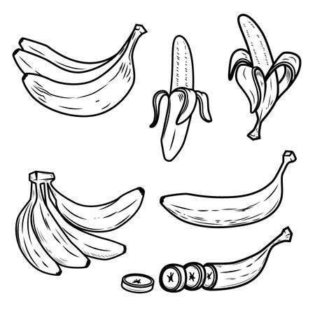 Set of the fresh banana icons. Design elements for logo, label, emblem, poster. Vector illustration