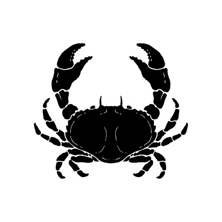 Hand drawn crab illustration. Seafood. Design element for logo, label, emblem, sign, poster. Vector illustration Çizim