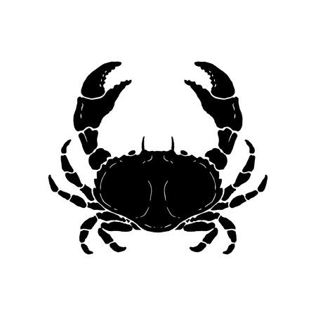 Ilustración de cangrejo dibujado a mano. Mariscos. Elemento de diseño de logotipo, etiqueta, emblema, letrero, cartel. Ilustración vectorial