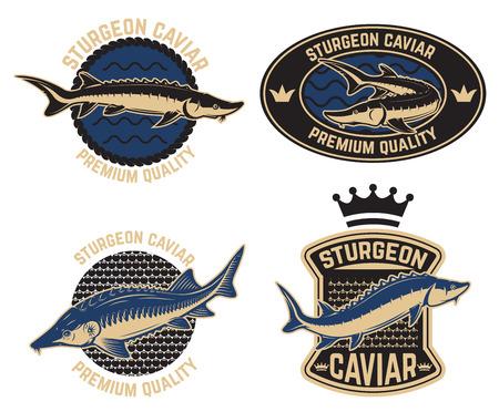 Sturgeon caviar label template. Design element for logo, label, emblem, sign, poster. Vector illustration Illustration