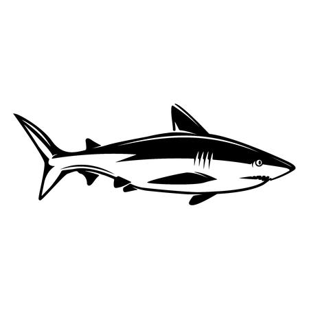 Shark illustration. Design elements for logo, label, emblem, sign, menu. Vector image