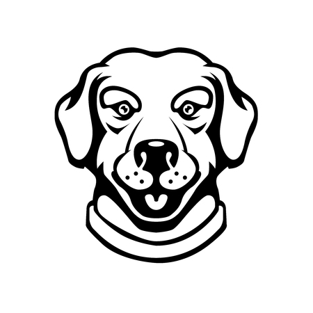Labrador head illustration in engraving style. Design element for logo, label, sign, poster, t shirt. 일러스트