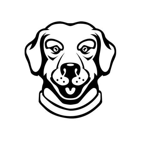 Labrador head illustration in engraving style. Design element for logo, label, sign, poster, t shirt. Illustration