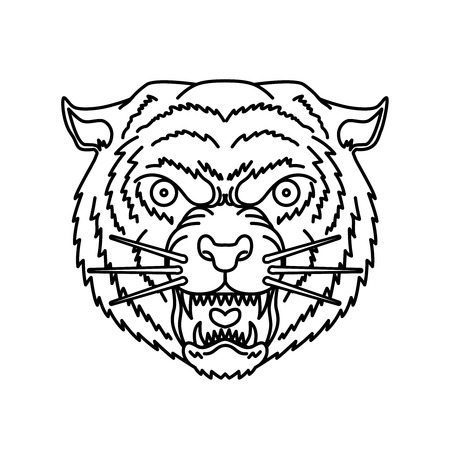 Tiger head in line style. For logo, label, sign, banner, t shirt, poster. Standard-Bild - 114136801