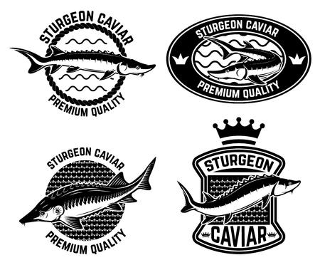 Szablon etykiety kawior z jesiotra. Element projektu logo, etykieta, godło, znak, plakat.