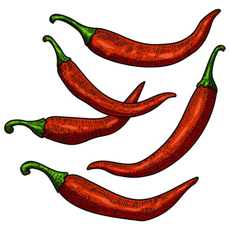 Set of chili pepper illustrations on white background. Design element for poster, card, banner, menu. Vector illustration Фото со стока - 126321916