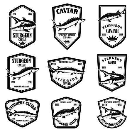 Set of sturgeon caviar labels. Design element for logo, label, emblem, sign. Vector illustration. Banque d'images - 115915442