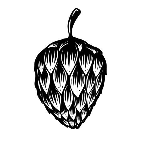 Beer hop illustration. Standard-Bild - 127796646