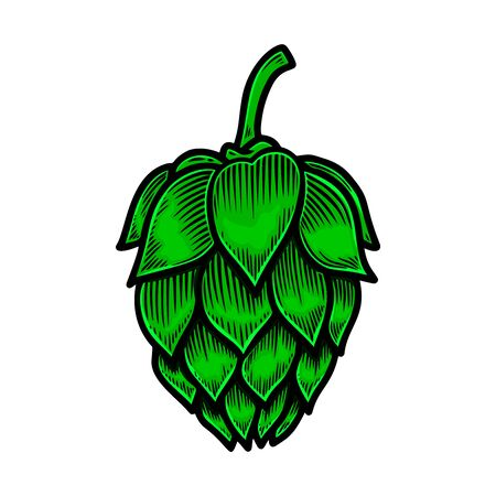 Beer hop illustration.
