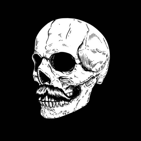 Hand drawn human skull on dark background.