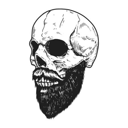 Bearded skull in engraving style on white background. Illustration