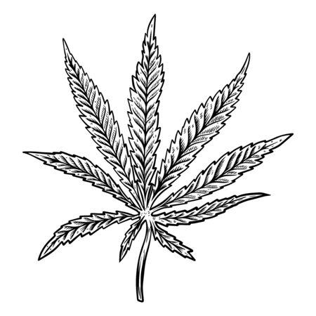 Illustration des Hanfblattes lokalisiert auf weißem Hintergrund. Gestaltungselement für Poster, Banner, T-Shirt, Emblem. Vektor-Illustration
