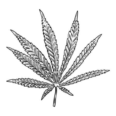 Ilustración de la hoja de cannabis aislada sobre fondo blanco. Elemento de diseño de carteles, pancartas, camisetas, emblemas. Ilustración vectorial
