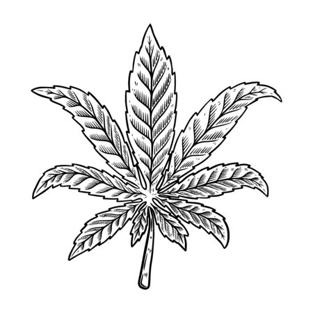 Illustration of cannabis leaf isolated on white background. Design element for poster, banner, t shirt, emblem. Vector illustration