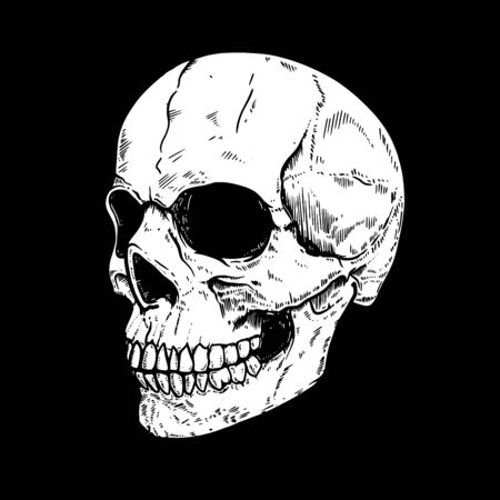 Illustration of human skull on dark background. Design element for poster, card, flyer, emblem, sign. Vector illustration