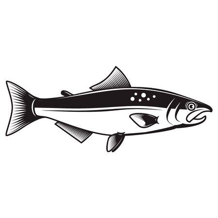 Illustration of the salmon fish isolated on white background.