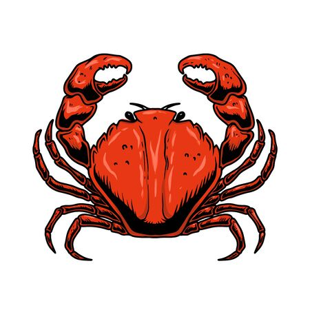 Illustration of crab in engraving style isolated on white background. Design element for label, sign, poster, banner, card. Vector illustration