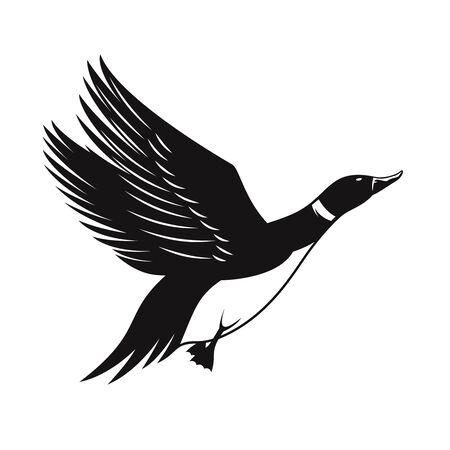 Illustration of wild duck isolated on white background. Design element for   label, emblem, sign. Vector illustration