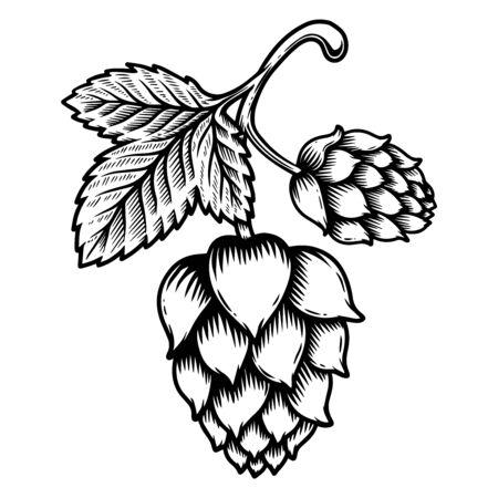 Illustration of beer hop cone in engraving style. Design element for  label, sign, emblem, poster. Vector illustration