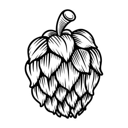 illustration of beer hop in engraving style. Design element for poster, label, sign, emblem, menu. Vector illustration Vetores