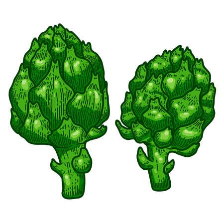 Illustration of artichoke in engraving style. Design element for logo, label, emblem, sign, badge. Vector illustration 일러스트