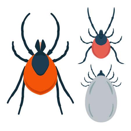 Set of Illustration of mite in flat style. Design element for infographic, emblem, sign, poster, car, banner. Vector illustration Ilustracja