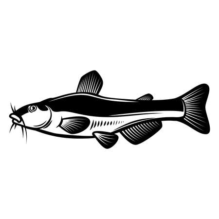 Illustration of catfish in engraving style. Design element for logo, label, sign, poster, t shirt. Vector illustration