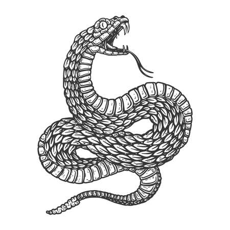 Illustration of poisonous snake in engraving style. Design element for  label, sign, poster, t shirt. Vector illustration Vectores