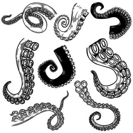 Set of octopus, squid tentacles in engraving style. Design element for label, emblem, sign, badge. Vector illustration