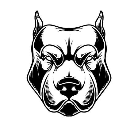 Illustration of head of pit bull in vintage monochrome style.