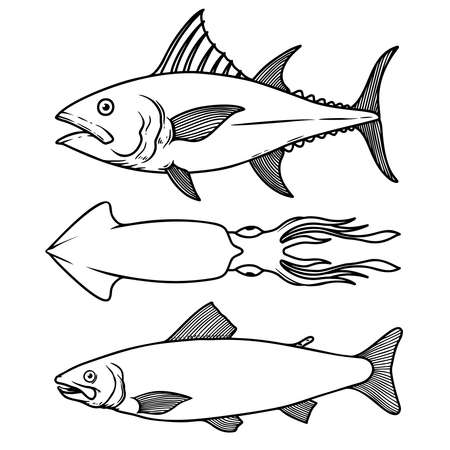 Illustration of tuna, squid, salmon in line style. Design element for label, sign, poster, t shirt. Vector illustration