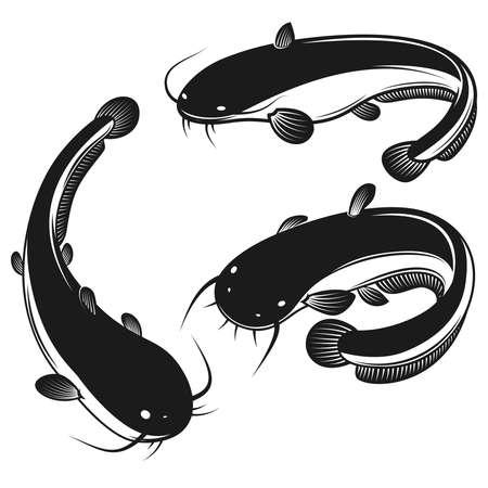 Set of illustration of catfish in engraving style. Design element for label, sign, poster, t shirt. Vector illustration 矢量图像