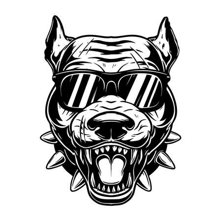 Illustration of head of angry pitbull in sunglasses in vintage monochrome style. 矢量图像