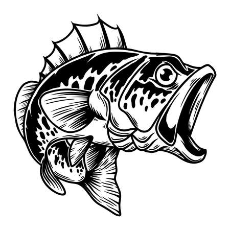 Illustration of bass fish. Big perch. Perch fishing. Design element for logo, emblem, sign, poster, card, banner. Vector illustration Vettoriali