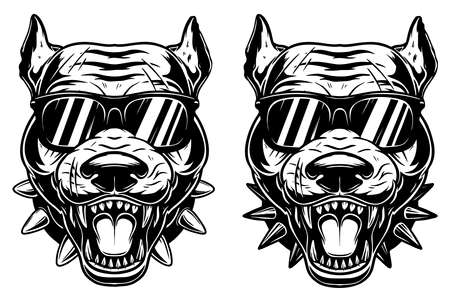 Set of Illustrations of head of angry pitbull in sunglasses in vintage monochrome style. Design element for logo, emblem, sign, poster, card, banner. Vector illustration