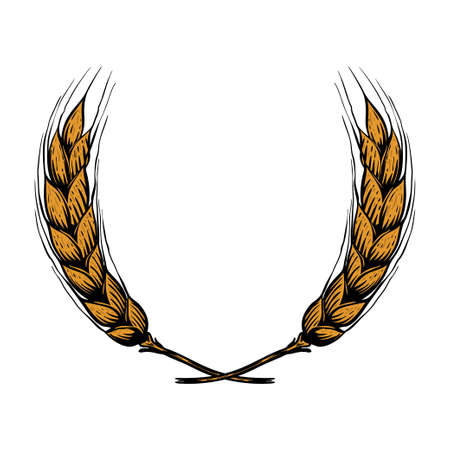 Illustration of wreath from wheat spikelets in engraving style. Design element for poster, card, banner, menu. Vector illustration 向量圖像