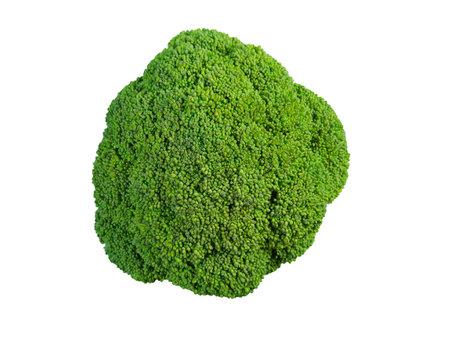 Broccoli. Vegetable isolated on white background