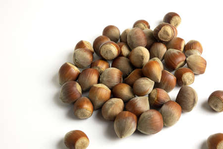 Hazelnut nut isolated on white background