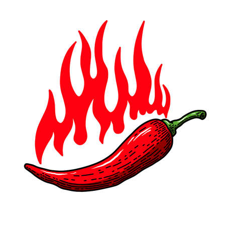 Set of illustrations of chili peppers with flame of fire in engraving style. Design element for emblem, sign, poster, card, banner, flyer. Vector illustration Çizim