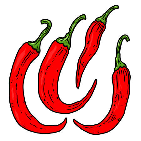 Set of illustrations of chili peppers in engraving style. Design element for emblem, sign, poster, card, banner, flyer. Vector illustration