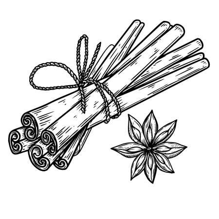 Illustration of cinnamon in engraving style. Design element for emblem, sign, poster, card, banner, flyer. Vector illustration