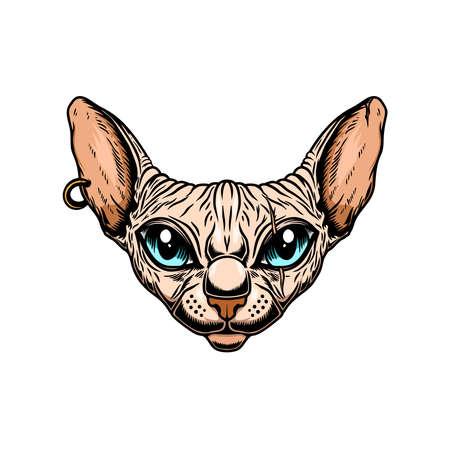Illustration of sphynx cat head. Design element for poster card, emblem, sign. Vector illustration Vetores