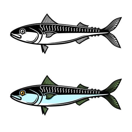 Illustration of mackerel. Design element for label, sign, emblem, poster. Vector illustration Illustration