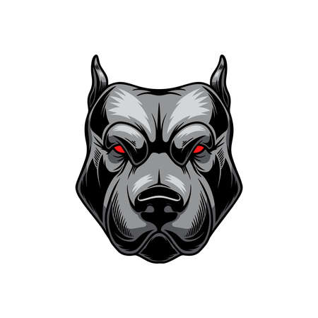 Illustration of angry pitbull head. Design element for logo, label, sign, emblem, poster. Vector illustration