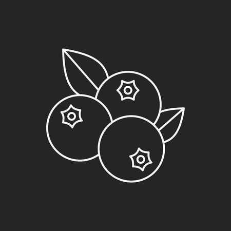 blueberry: fruits blueberry line icon