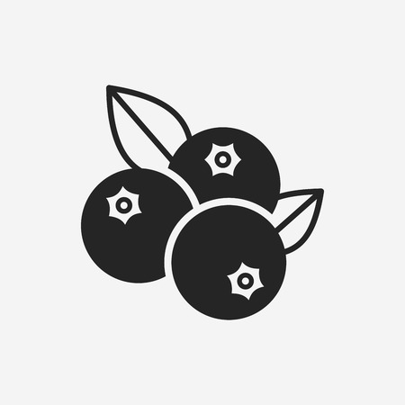 fruits blueberry icon