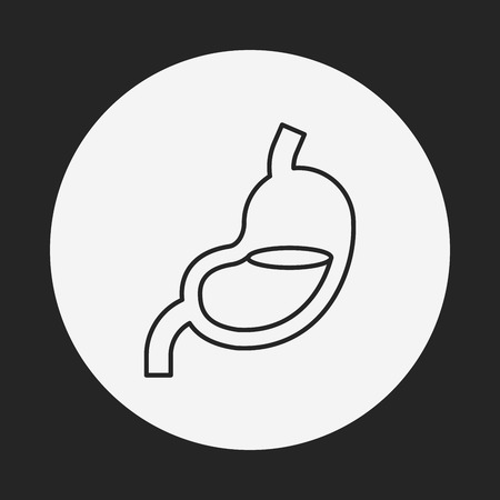 physiology: Stomach line icon