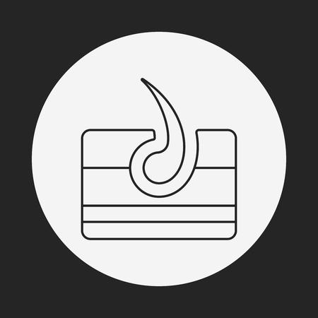 sebaceous: Hair root line icon Illustration