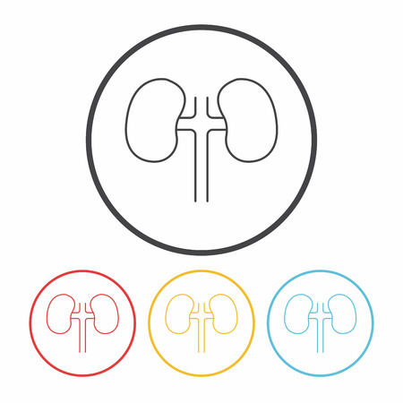 renal: Kidney line icon
