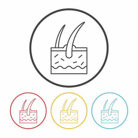 cell layers: Hair root line icon Illustration